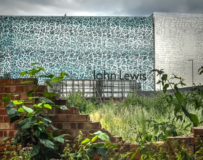 John Lewis, Showcase Cinema