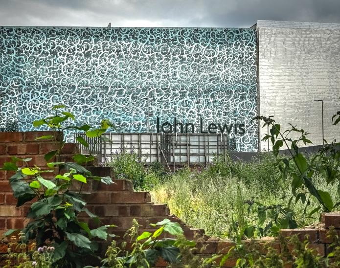 John Lewis, Showcase Cinema